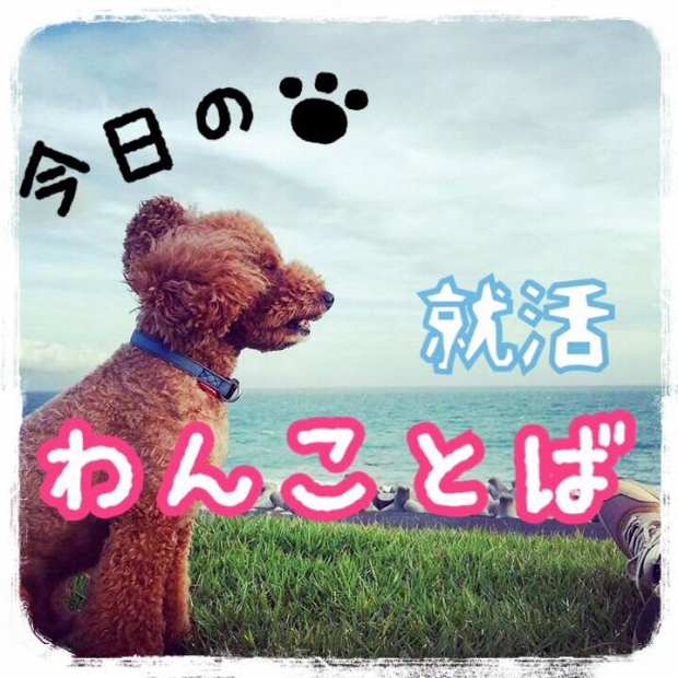【8/30】今日のわんことば by.イチロー